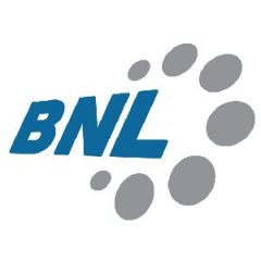BNL bearings logo